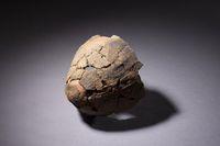 A縄文時代前期の丸底の土器